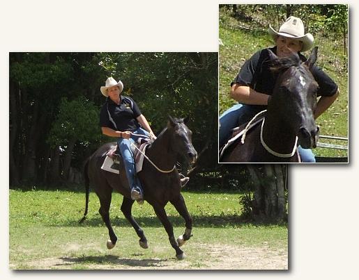 Mega-Horse-Adrianne-Riding